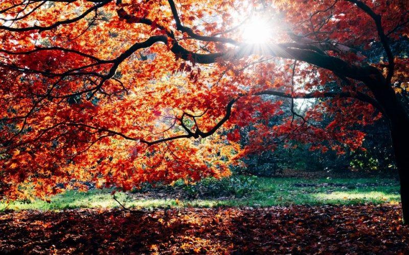 best places for autumn breaks uk