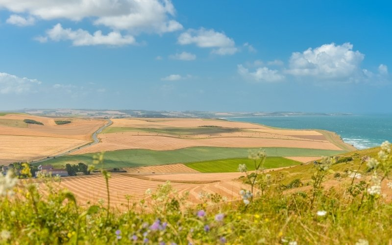 French fields, cliffs and sea
