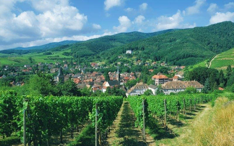 village vineyards France